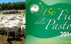 156-FieraPastorizia-20Luglio2014