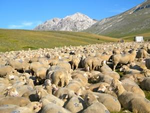 Campo Imperatore nel cuore del Parco nazionale del Gran Sasso e Monti della Laga
