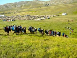 Un gruppo di scout attraversa la rassegna 2014